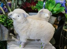 Two adorable decorative fabric and fur spring lambs in front of plants - selective focus royalty free stock image