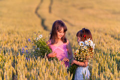 Two adorable girls. With bouquets of flowers in a field of wheat Stock Images