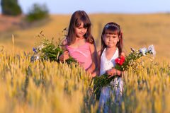 Two adorable girls. With bouquets of flowers in a field of wheat Stock Photos