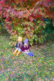 Two adorable girls in forest at warm sunny autumn Royalty Free Stock Image