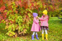 Two adorable girls in forest at warm sunny autumn Stock Photos