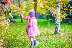 Two adorable girls in forest at warm sunny autumn Royalty Free Stock Photography