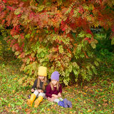 Two adorable girls outdoors in autumn forest Stock Photos