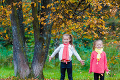 Two adorable girls in park at warm sunny autumn Stock Photos