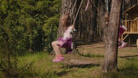 Two girls are swinging on swings in the forest. Two adorable girls are swinging on swings in a summer forest stock video