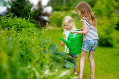 Two adorable girls watering plants and flowers Stock Photo