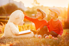 Two adorable little boys with his teddy bear friend in the park Royalty Free Stock Photo