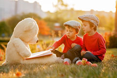 Two adorable little boys with his teddy bear friend in the park Royalty Free Stock Images