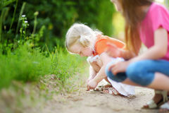 Two adorable little girl catching babyfrogs Royalty Free Stock Photography