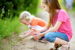 Two adorable little girl catching babyfrogs Stock Images