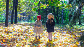 Two adorable little girls enjoying autumn sunny Royalty Free Stock Images