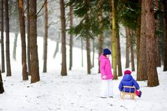 Two adorable little girls having fun together in beautiful winter park. Beautiful sisters playing in a snow. Stock Photography