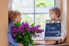 Two adorable little sibling boys with blooming lilac flowers Royalty Free Stock Image
