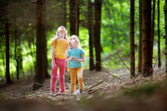 Two adorable little sisters hiking in a forest on summer Royalty Free Stock Photography