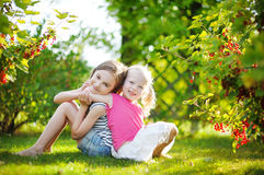 Two adorable little sisters picking red currants in a garden Stock Images