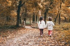 Walk through the forest with her sister royalty free stock image