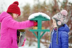 Two adorable sisters feeding birds on chilly winter day in city park. Children helping birds at winter. Winter activities for kids stock photo