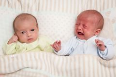 Two adorable twin babies. One looking, one crying. Two twin babies. One looking, one crying royalty free stock images