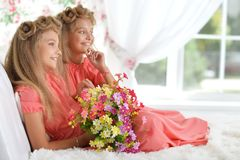 Two adorable twin sisters in beautiful pink dresses with bouquet. Of flowers posing at home stock photo