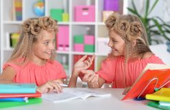 Portrait of a two adorable twin sisters royalty free stock photo