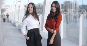 Two Adorable Women Standing at Promenade. In Malaga Pier and looking at camera  they wearing formal business elegant clothes  smiling stock video footage