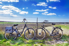Two adult bikes Royalty Free Stock Images
