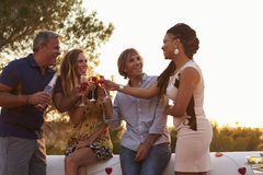 Two adult couples on a rooftop making a toast at sunset Stock Images