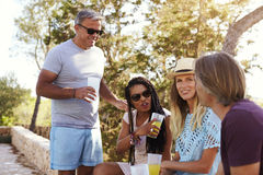 Two adult couples socialising outdoors, Ibiza, close up Stock Photos