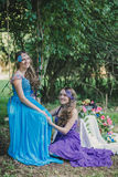 Two adult sisters, twins Royalty Free Stock Photos