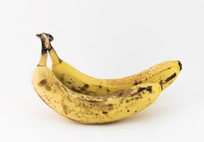 Two aged bananas Stock Photography