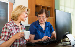 Two aged collegues with PC Royalty Free Stock Images