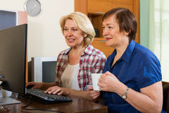 Two aged collegues with PC Royalty Free Stock Photo