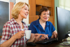 Two aged collegues with PC Stock Photography