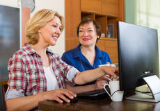 Two aged collegues with PC Royalty Free Stock Image
