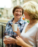 Two aged housewives with cup of tea at terrace. With decorative plants Stock Image