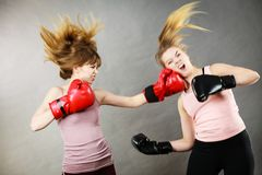 Two agressive women having boxing fight. Two agressive women wearing boxing gloves having argue fight being mad at each other. Female violance concept royalty free stock images