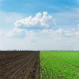 Two agriculture fields and clouds Royalty Free Stock Photography