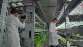 Two agronomists in white coats at a modern vegetable production facility.