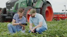 Two agronomists work in the field, studying the condition of plants. In the background a large tractor. HD video stock footage