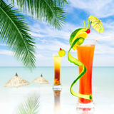 Two alcohol cocktails Royalty Free Stock Image