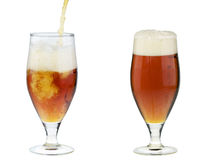Two alcohol dark beer glasses with froth isolated Stock Photo