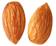 Two almonds isolated on a white. Stock Image