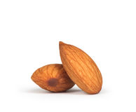 Two almonds Royalty Free Stock Images