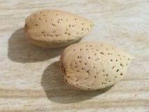 Two almonds Royalty Free Stock Photo