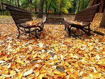 Two Alone Wooden Benches In Autumn Park With Royalty Free Stock Image