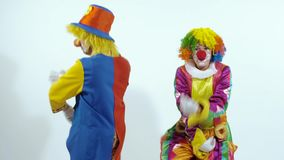 Two amusing clowns dancing together, when one of them drops the glasses stock footage