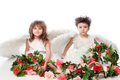 Two angels. Beautiful little angels holding flowes. Isolated over white background Stock Images