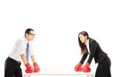 Two angry businesspeople with boxing gloves having an argument. Isolated on white background royalty free stock photo