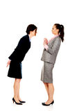 Two angry businesswomans. Royalty Free Stock Image