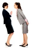 Two angry businesswomans. Royalty Free Stock Photo